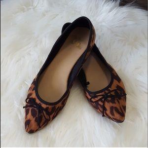 Excellent condition leopard flats